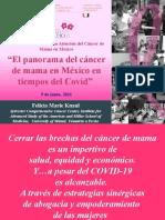 El Panorama Del Cancer de Mama en Mexico en Tiempos Del COVID-19