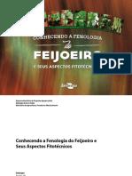 Conhecendo a Fenologia do Feijoeiro e seus aspectos fitotécnicos