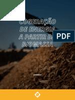 1599228121eBook Conhea a Cogerao de Energia a Partir Da Biomassa