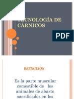 TECNOLOGÍA DE CÁRNICOS