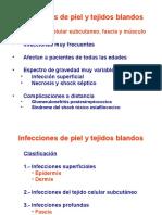 T 04. Infecciones de piel y t. blandos 15032010