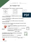 Cellular Transport Review