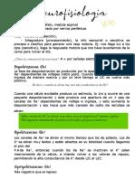 NEUROFISIOLOGIA PDFFFF-convertido