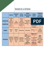 CUADRO DE ORGANOS SOCIALES