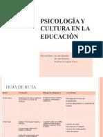 Psicologia y Cultura en La Educacion ISFD 82