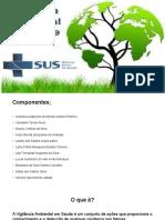 Saúde Única - Vigilância em saúde ambiental (editado01-06) (1) (1) (1)