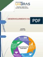 Slide Desenvolvimento Sustentável