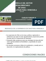 Politicas Agrícolas CHILE EVENTO IFPRI-MSU