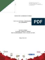 Anexo Tecnico Resolucion 040 2020 Protocolos