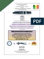 Rapport Sur La Modélisation de La Capture Du Div. Dem Par Le DDGAME