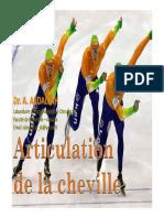 anato23-articulation_cheville
