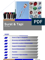 surat-tapi-district-profile