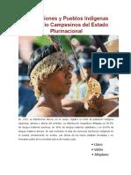 Las Naciones y Pueblos Indígenas Originario Campesinos Del Estado