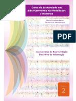 Instumentos-de-Repr-Descr-da-Informacao-LIVRO