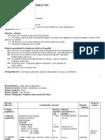 2_proiect_ed.fizica