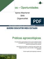Sylvia Waschner - Recuperação Econômica dos Municípios da Região Serrana