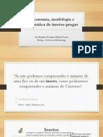 1-taxonomiamorfologiaesistemticadeinsetos-pragas-160609011039