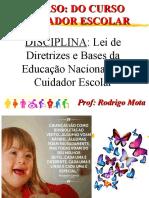 Lei de Diretrizes e Bases da Educação Nacional e o Cuidador Escolar