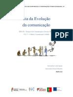 História da Evolução da Comunicação - Viviana Mendes