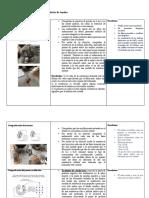 Comprobaciones en el alternador y regulador de tensión