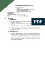PLAN PROGRAMACIÓN HORAS LECTIVAS AGROP CETPRO HMYQ 2020