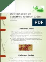 Determinacion Coliformes y e, Coli