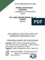procesounico