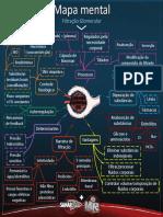 Mapa mental de filtração glomerular