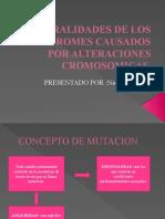 GENERALIDADES DE LOS SINDROMES CAUSADOS POR ALTERACIONES CROMOSOMICAS