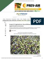 Acque di vegetazione_ da problema ambientale ad opportunità economica - AgroNotizie - Economia e politica