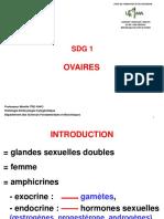 Ovaires