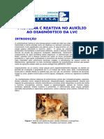 Proteina c Reativa No Auxilio Ao Diagnostico Da Lvc