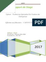RAPORT DE STAGE 2017