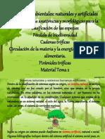 Olga - 1er Año - Ecositemas - Sistemas Ambientales