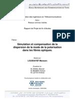Compensation de La Dispersion de Mode de Polarisation Dans La Fibre - LOUSAIEF 2006