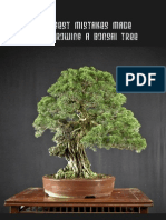 7_Biggest_Mistakes_Made_When_Growing_A_Bonsai_Tree