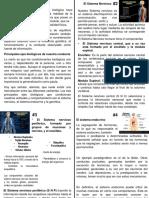 Contenido Expo Dimension Biologica (PDF)