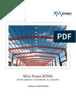 mini_projet_RDM6