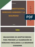 DERECHO CONSTITUCIONAL, DERECHOS HUMANOS Y LA SEGURIDAD