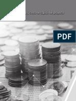 Proyectos de Inversion Financiamiento y