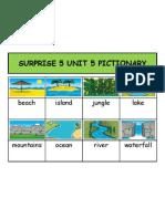 Surprise 5 Unit 5 Pictionary