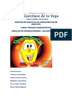 Plan de Negocio -Helados Tropicales V Ciclo MBA