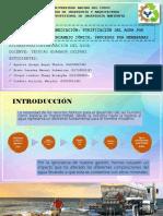 Diapositivas. Grupo N°7 Métodos de Remediación