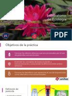 Práctica_4_Ecología_PPT