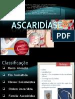 ppt Ascaridíase