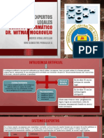 Sistema expertos legales