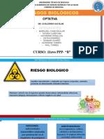 GRUPO 2- RIESGOS BIOLÓGICOS