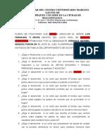 Pliego-de-Posiciones-juicio-oral-de-alimentos-2 (1)