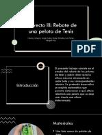 Proyecto III