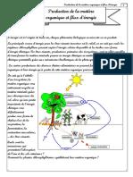 mecanismes-d-absorption-de-l-eau-et-des-sels-mineraux-chez-les-plantes-cours-1